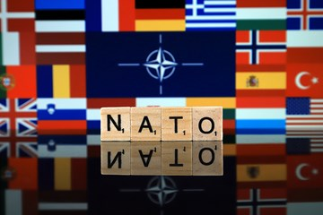 Georgia and NATO: A Small Country in Search of Security