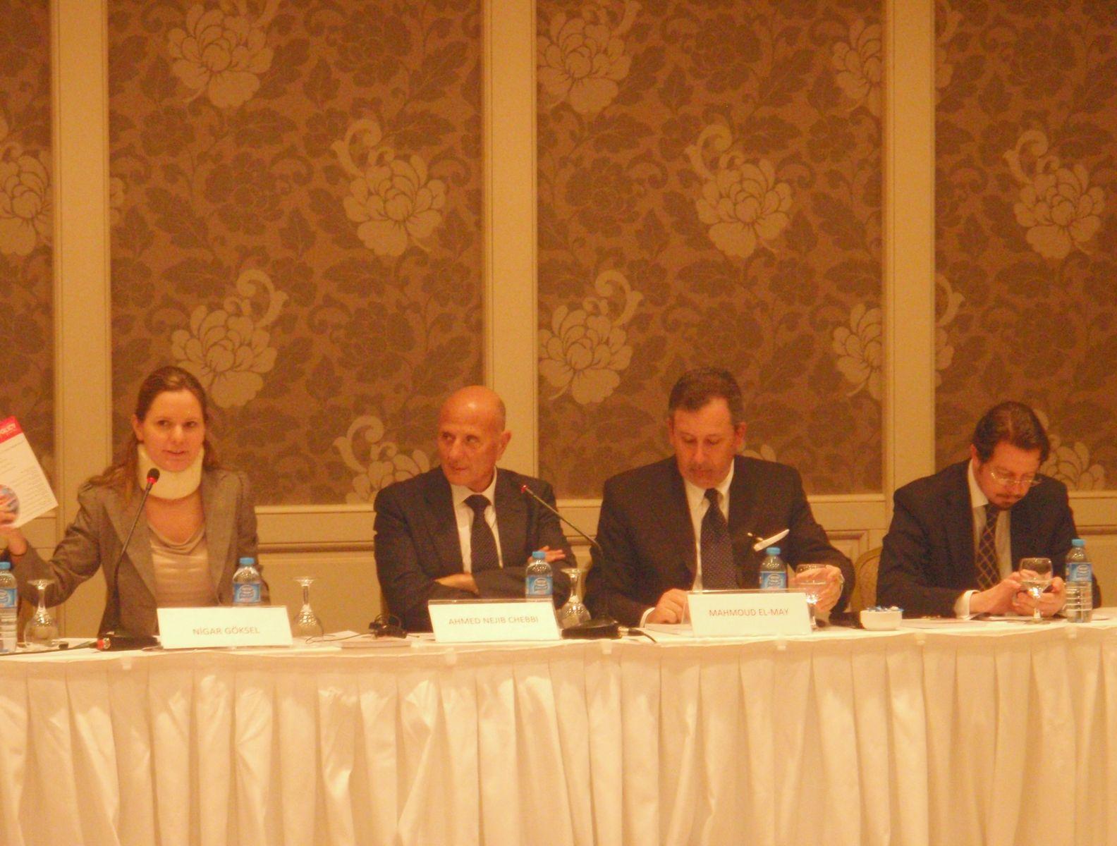 """The Jasmine Revolution and Tunisian Process of Change"""