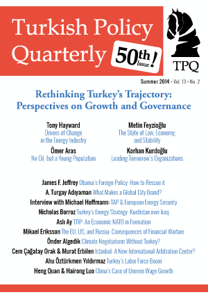 Rethinking Turkey's Trajectory: Perspectives on Growth and Governance